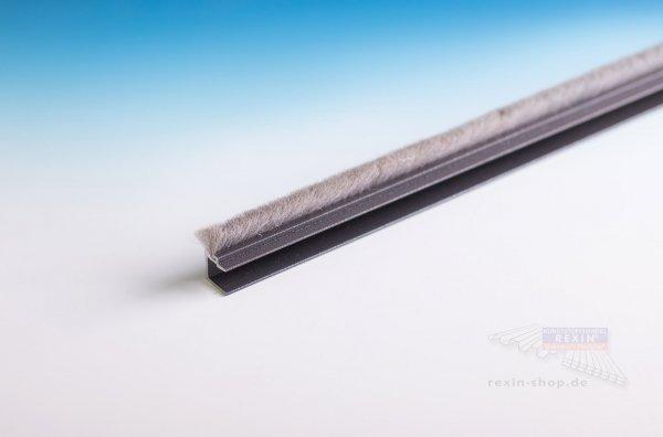 REXOslide Bürstenprofil für 8mm Glasstärke, 3m